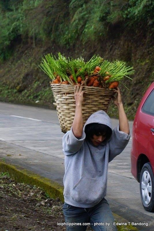 Carrot Man Jeyrick Sigmaton Viral KMJS Mountain Province farmer Edwina Bandong