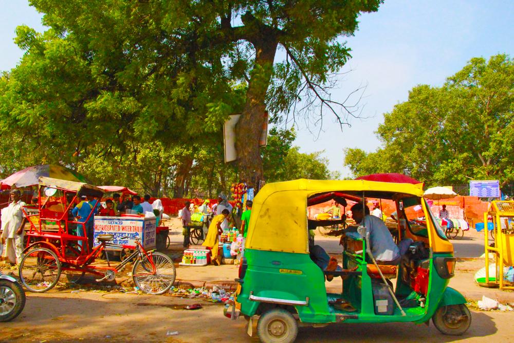 delhi-roads-rickshaw-goat-sellers-beggars
